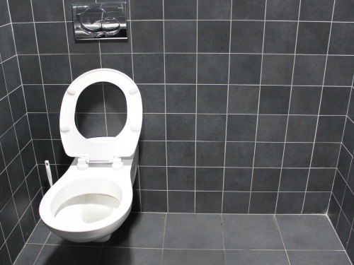 Rhône-Alpes : elle passe le réveillon enfermée dans des toilettes