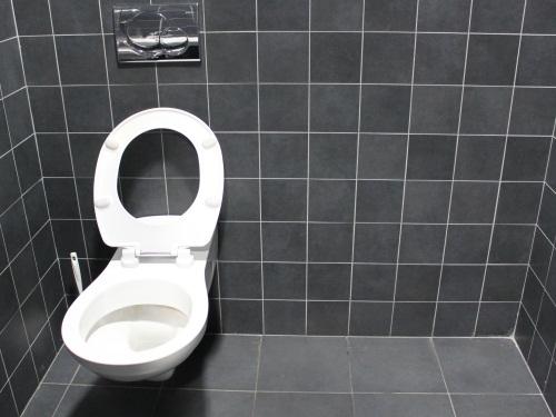 cach 233 e dans les toilettes du ninkasi voulait assister gratuitement 224 un concert