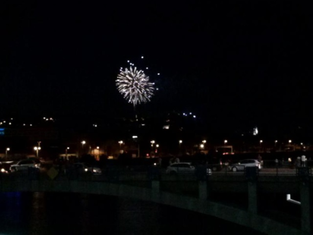 Feu d'artifice du 14 juillet à Lyon : des avis globalement mitigés