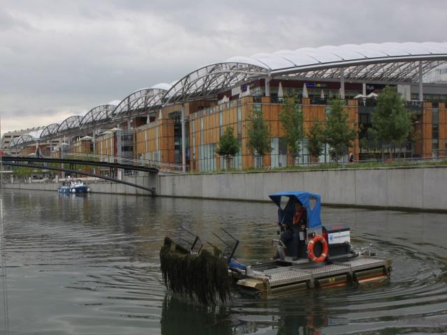Lyon : trois tonnes de déchets récupérés ce samedi dans la darse