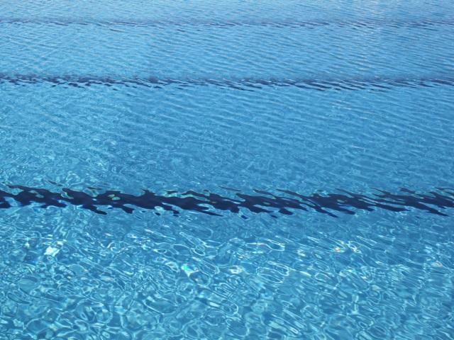 Près de Lyon : deux agents d'une piscine municipale positifs à la Covid-19