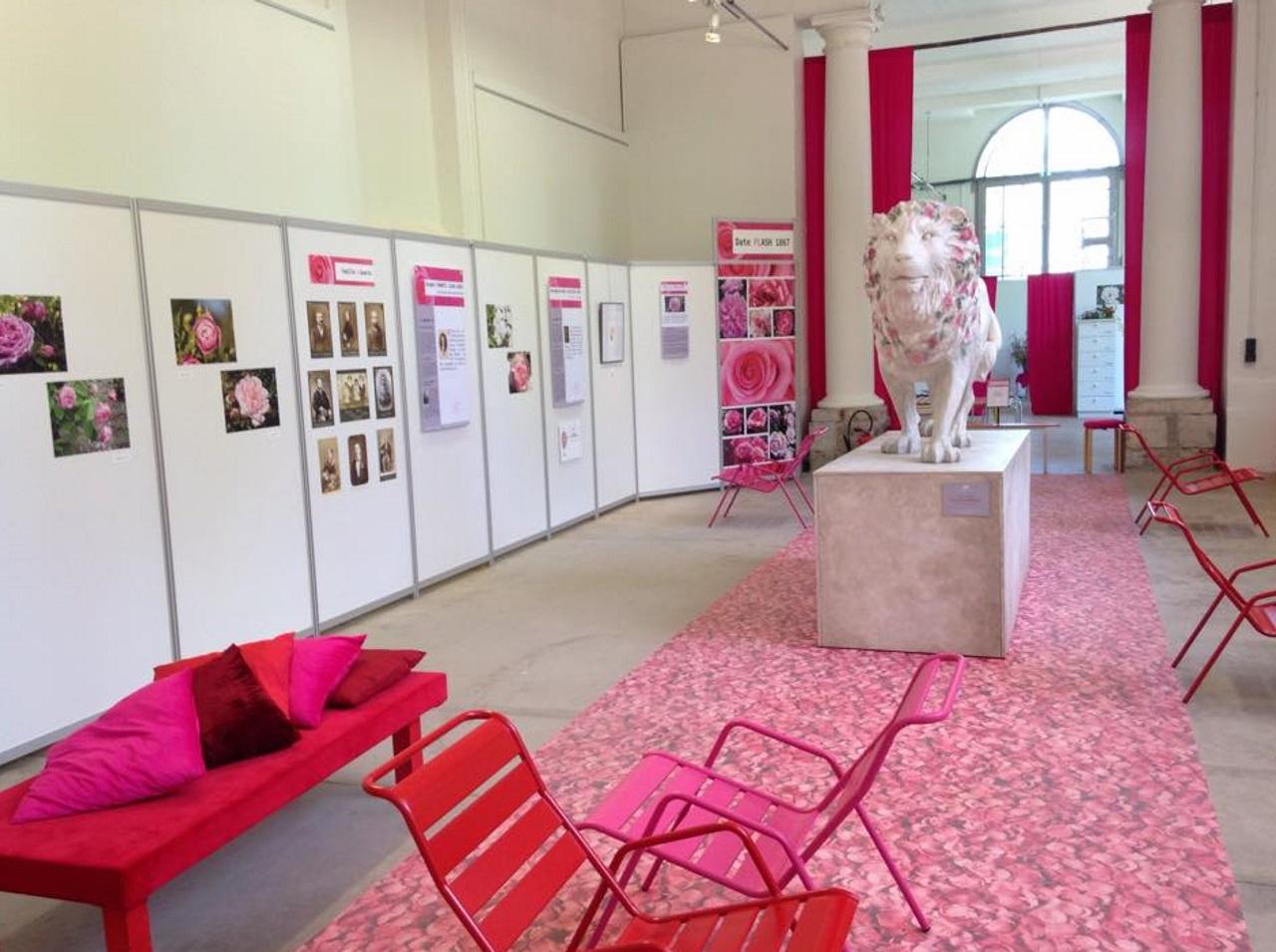Exposition Terre de Roses à l'Orangerie du Parc - LyonMag
