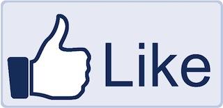 Lyon, 2e plus grande communauté Facebook de France