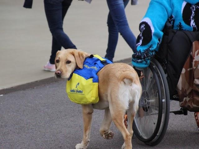 Le futur quartier de la Part-Dieu à Lyon inadapté aux personnes handicapées selon les associations