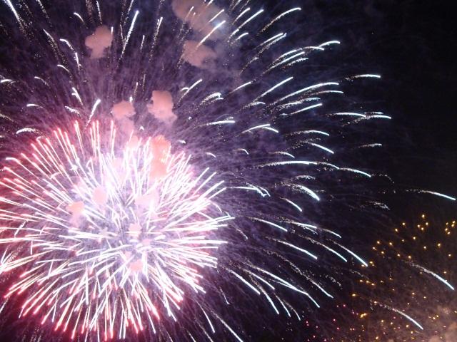 Le ciel dans tous ses états pour le feu d'artifice du 14 juillet à Lyon