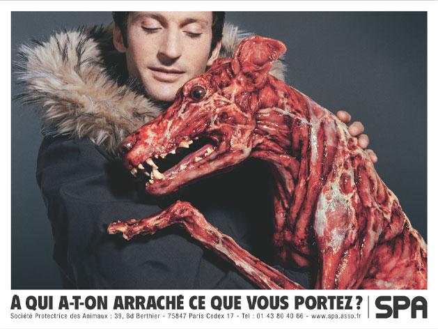 Les militants anti-fourrure se rassemblement samedi à Lyon