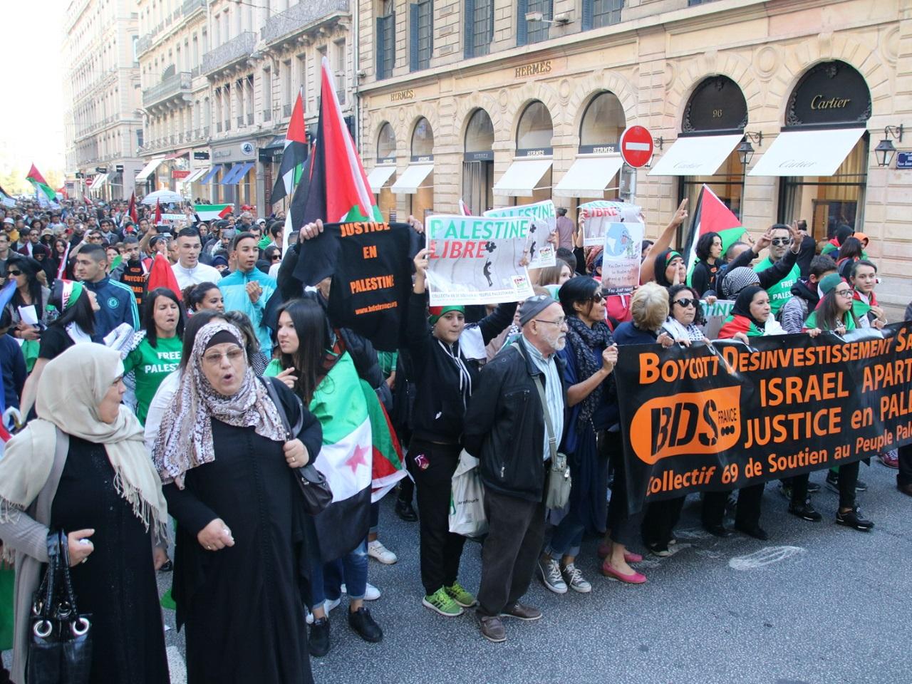 Manifestation de soutien à la Palestine - LyonMag