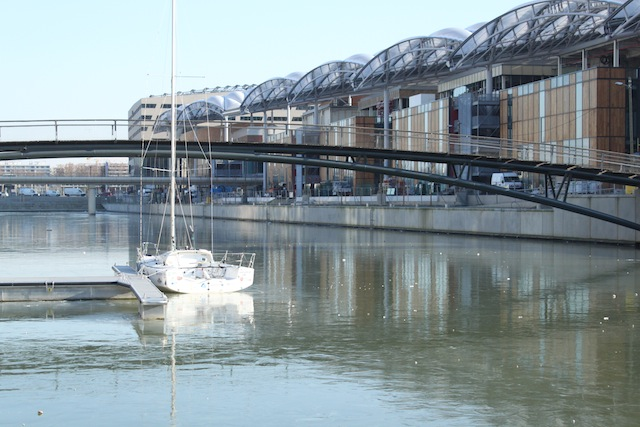 Vague de froid à Lyon : la Saône se fige à la Confluence