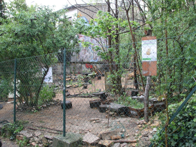 """Lyon : le jardin des """"Pendarts"""" évacué"""