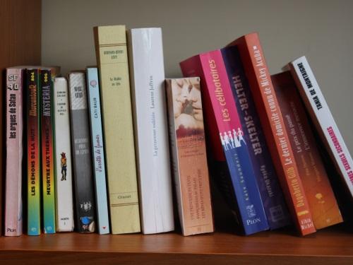 Lyon : ouverture du 1er salon du livre pour ados et jeunes adultes