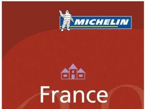 Trois nouvelles tables lyonnaises à prix abordable dans le guide Michelin