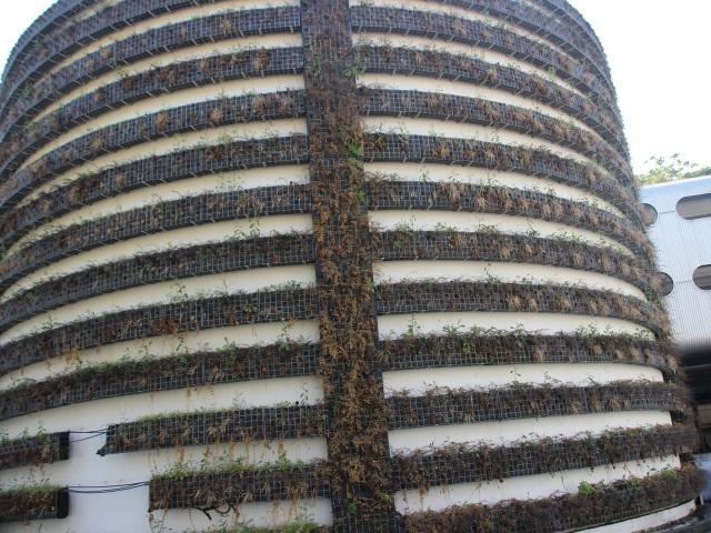 Lyon : le mur végétal de Perrache va être remplacé pour près de 30 000 euros