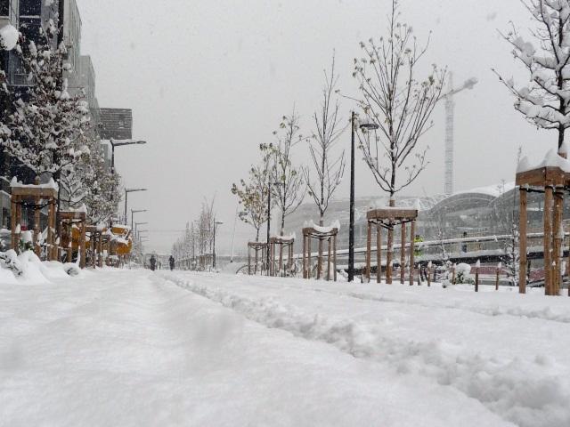 Neige à Lyon : le Grand Lyon activera son plan de viabilité hivernale cette nuit