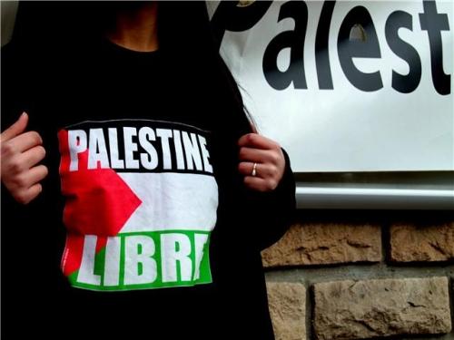 Lyon : une mobilisation samedi contre les raids israéliens à Gaza