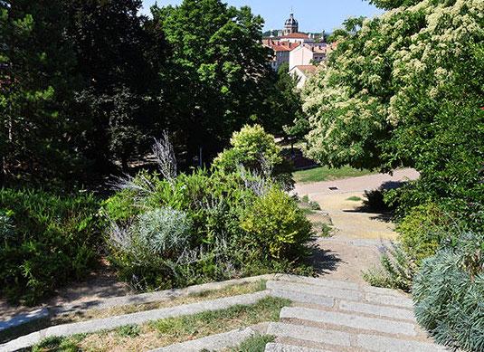 Lyon : certains parcs de la ville voient leurs horaires élargis pour davantage de fraîcheur cet été