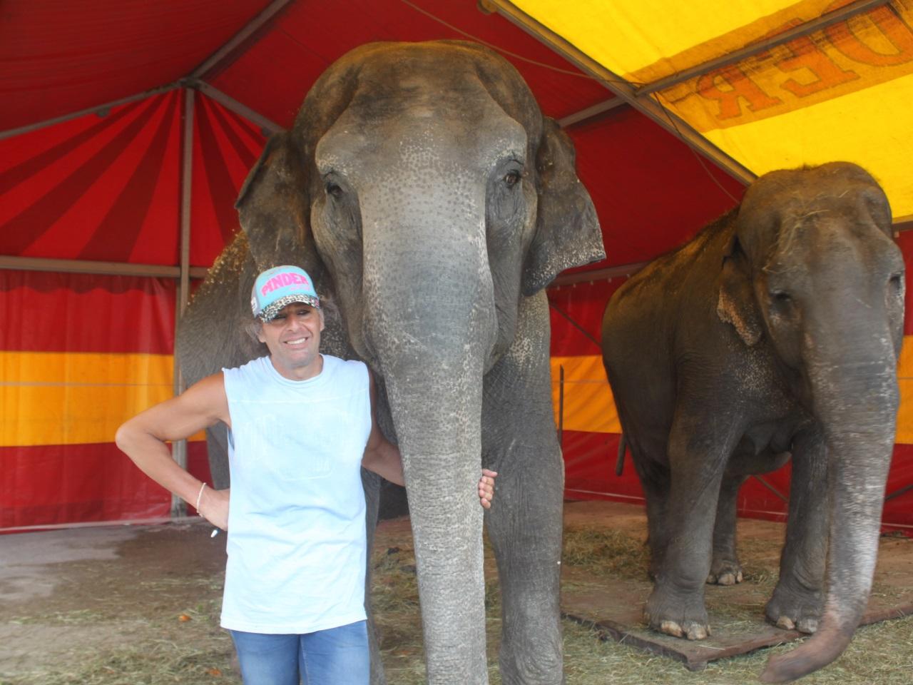 Frederic Eldelstein et ses éléphants - LyonMag