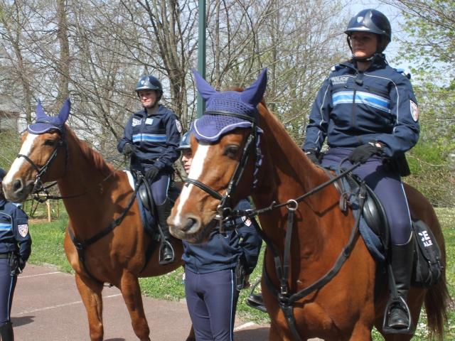 Lyon se dote d'une police équestre