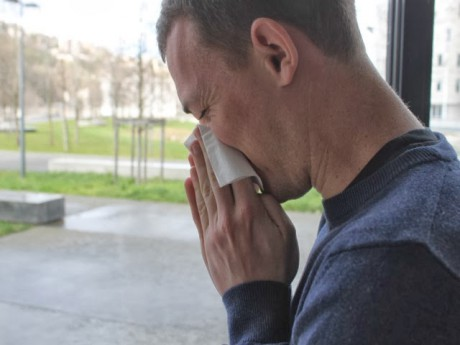 Pollens de bouleau: le Rhône toujours en alerte rouge