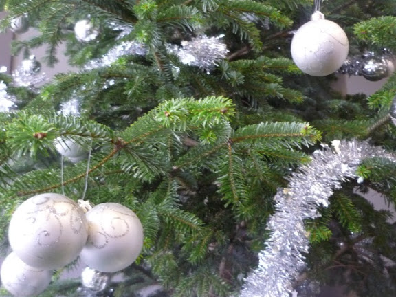 Grand Lyon : la collecte des sapins de Noël se termine ce samedi