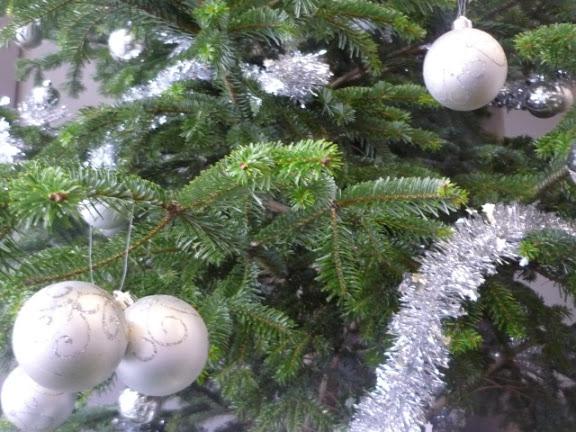 Lyon : la grande collecte de sapins de Noël a débuté