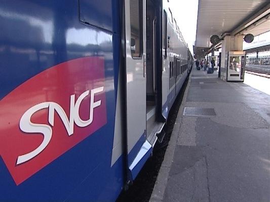 Les lignes TER Lyon-Grenoble et Lyon-Chambéry ont été arrêtées pendant plus de deux heures - Photo DR