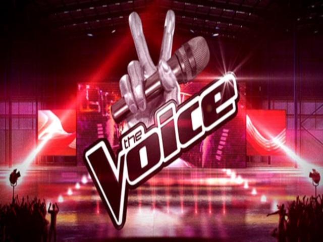 The Voice en concert ce soir à la Halle Tony Garnier