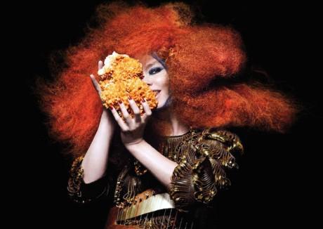 Le visuel de Biphilia, le dernier album de Björk, qui devrait constituer la pierre angulaire de son spectacle des Nuits de Fourvière - DR