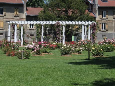 Les lyonnais ont rendez vous aux jardins ce week end for Jardin couvert lyon