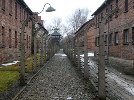 Auschwitz - LyonMag