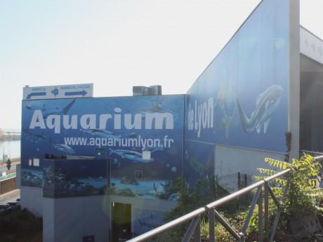 lyon l extension de l aquarium toujours au fond de l eau