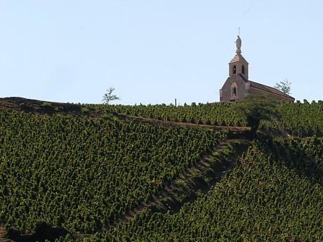 Le Beaujolais s'écharpe pour un nom de commune - LyonMag