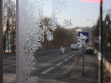 Si des records de douceur ont été battus, la pluviométrie a aussi été excédentaire à Lyon - Lyonmag.com
