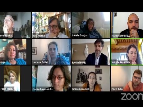 Le conseil du 1er arrondissement en visioconférence - Capture d'écran