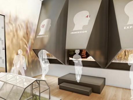 La future Cité de la Gastronomie de Lyon - DR