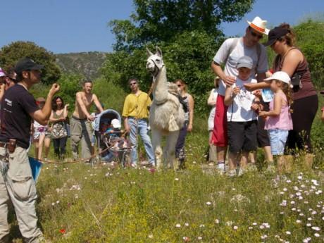 Les Lyonnais vont pouvoir participer à Nature en Fête ce week-end. DR