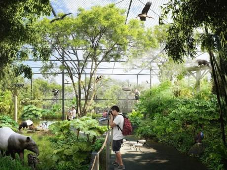 Simulation de l'intérieur du bâtiment de la Forêt d'Asie - DR Ville de Lyon
