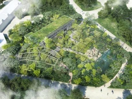 Plan de la future forêt d'Asie - DR