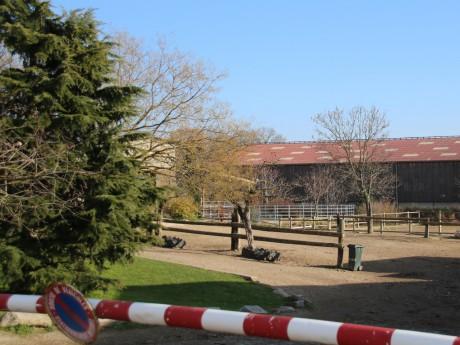 Le centre équestre de la Dame Blanche à Chaponost - LyonMag