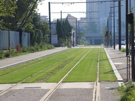 Bientôt, un tramway prendra la direction des Hôpitaux-Est via cette voie, rue Challemel-Lacour - LyonMag