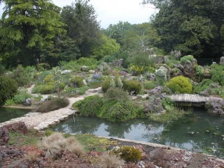 Le nouveau jardin alpin - LyonMag.com