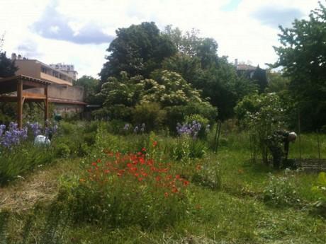 Jardin partagé - DR