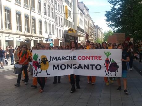 Une marche contre Monsanto en mai dernier à Lyon - LyonMag