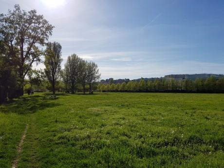 Le parc de Gerland - LyonMag