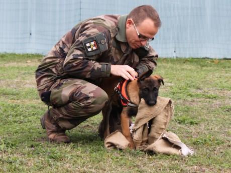 Persée et son maître, le sergent Mendy - Lyonmag.com