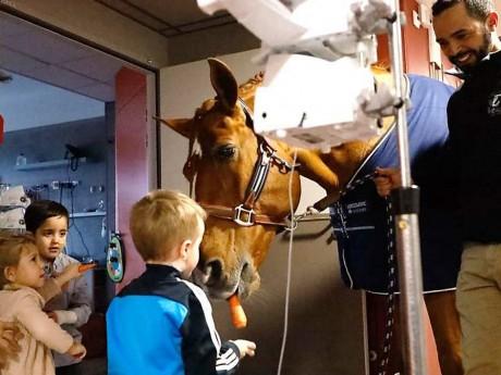 Peyo et les enfants de l'hôpital Louis Pradel - DR/HCL