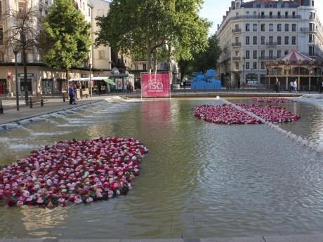 Le week-end sera rose à Lyon - LyonMag