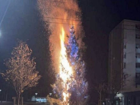 Le sapin de Noël de la Duchère en feu - DR