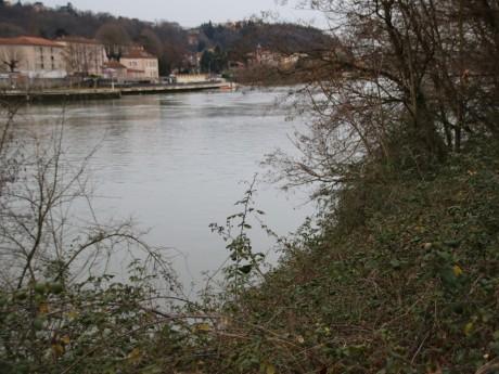 Les rives de Saône, près de l'île Barbe - LyonMag