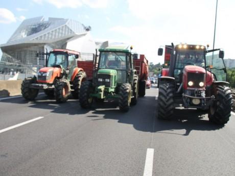 Les éleveurs lors d'une manifestation - LyonMag