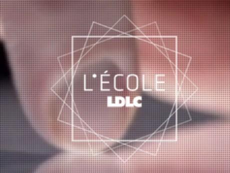 Le logo de L'Ecole LDLC - capture d'écran - DR